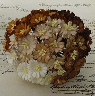 **PREORDER** Wild Orchid Crafts MIXED BROWN/WHITE COSMOS DAISY STEM FLOWERS