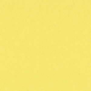 Bazzill SOUR LEMON Card Shoppe Heavy Weight 8.5 x 11 Cardstock - 25 Sheets
