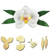 New! ORCHID Shapeabilities Create-A-Flower D-Lites Die Set from Spellbinders