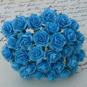 **PREORDER** Wild Orchid Crafts LIGHT TURQUOISE OPEN ROSES
