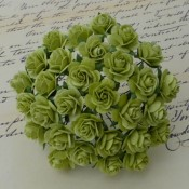 **PREORDER** Wild Orchid Crafts LIGHT LIME GREEN MULBERRY PAPER OPEN ROSES