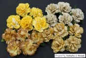 **PREORDER** Wild Orchid Crafts MIXED EARTH MULBERRY PAPER CARNATION FLOWERS