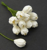 **PREORDER** Wild Orchid Crafts WHITE MULBERRY PAPER TULIP FLOWERS