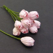 **PREORDER** Wild Orchid Crafts BABY PINK MULBERRY PAPER TULIP FLOWERS