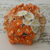 **PREORDER** Wild Orchid Crafts MIXED ORANGE/WHITE COSMOS DAISY STEM FLOWERS