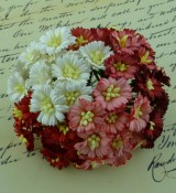 **PREORDER** Wild Orchid Crafts MIXED RED/WHITE COSMOS DAISY STEM FLOWERS