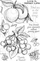 CHERRIES AND PEACHES Clear Stamp Set from Flourishes