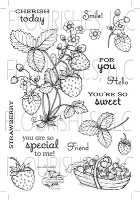 STRAWBERRIES Clear Stamp Set from Flourishes
